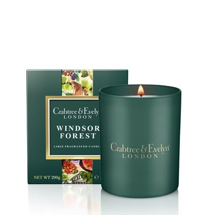 Windsor Forest Large Poured Candle 290 gr